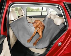 Bezpieczna podróż Twojego psa dzięki akcesoriom ŠKODY